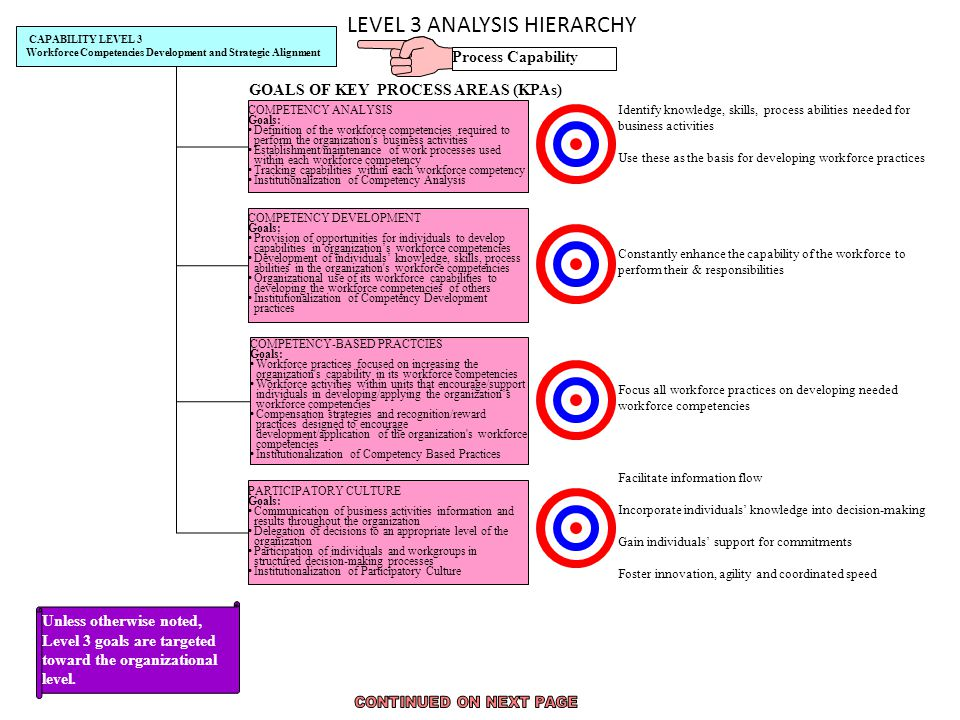 LEVEL 3 ANALYSIS HIERARCHY CAPABILITY LEVEL 3 Workforce Competencies Development and Strategic Alignment COMPETENCY ANALYSIS Goals: Definition of the