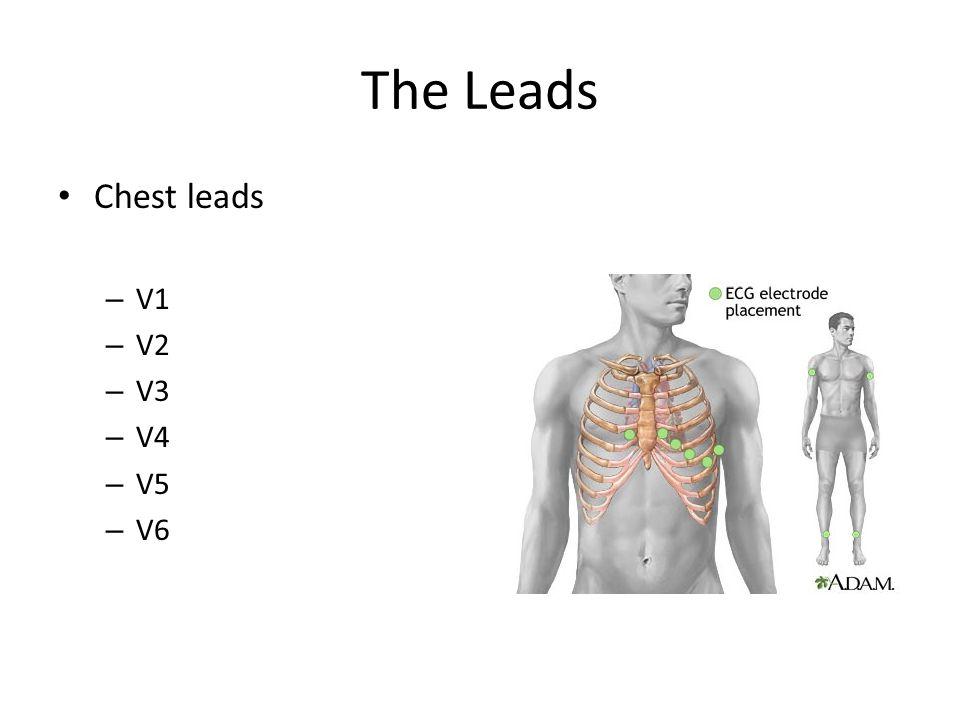 The Leads Chest leads – V1 – V2 – V3 – V4 – V5 – V6