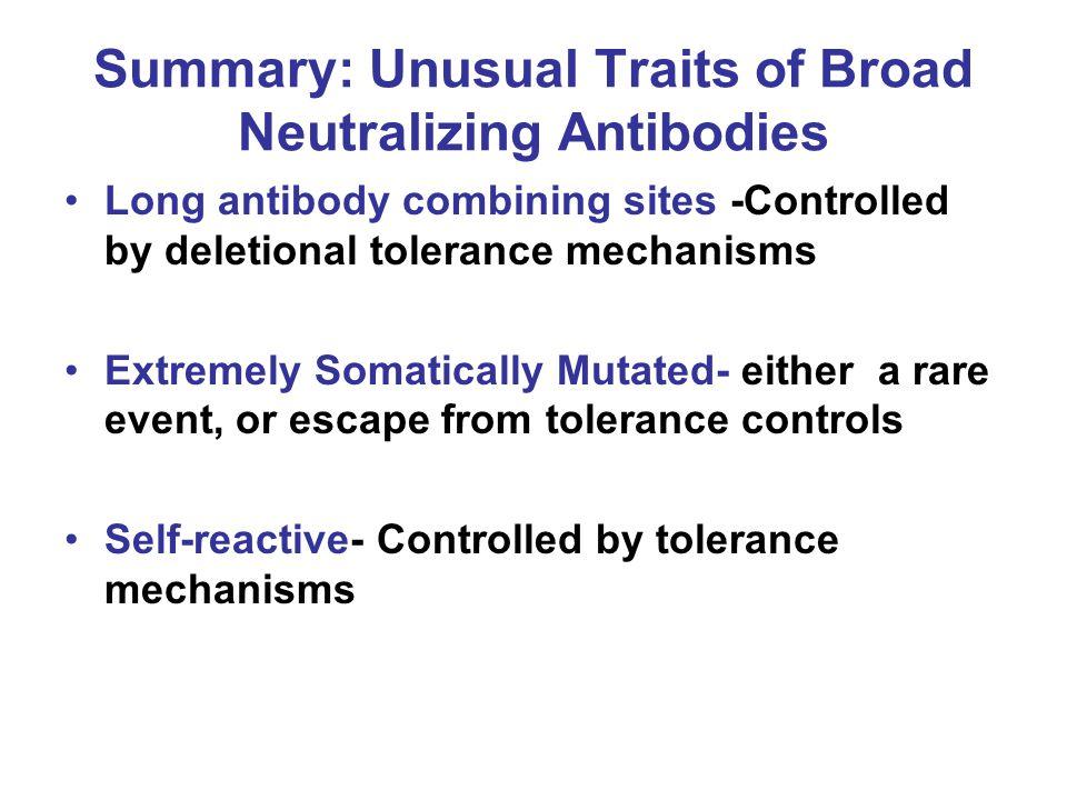 Summary: Unusual Traits of Broad Neutralizing Antibodies Long antibody combining sites -Controlled by deletional tolerance mechanisms Extremely Somati