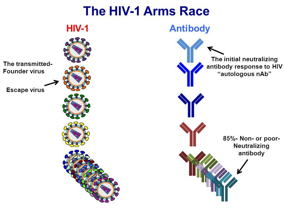 "The HIV-1 Arms Race HIV-1Antibody The transmitted- Founder virus The initial neutralizing antibody response to HIV ""autologous nAb"" Escape virus 85%-"
