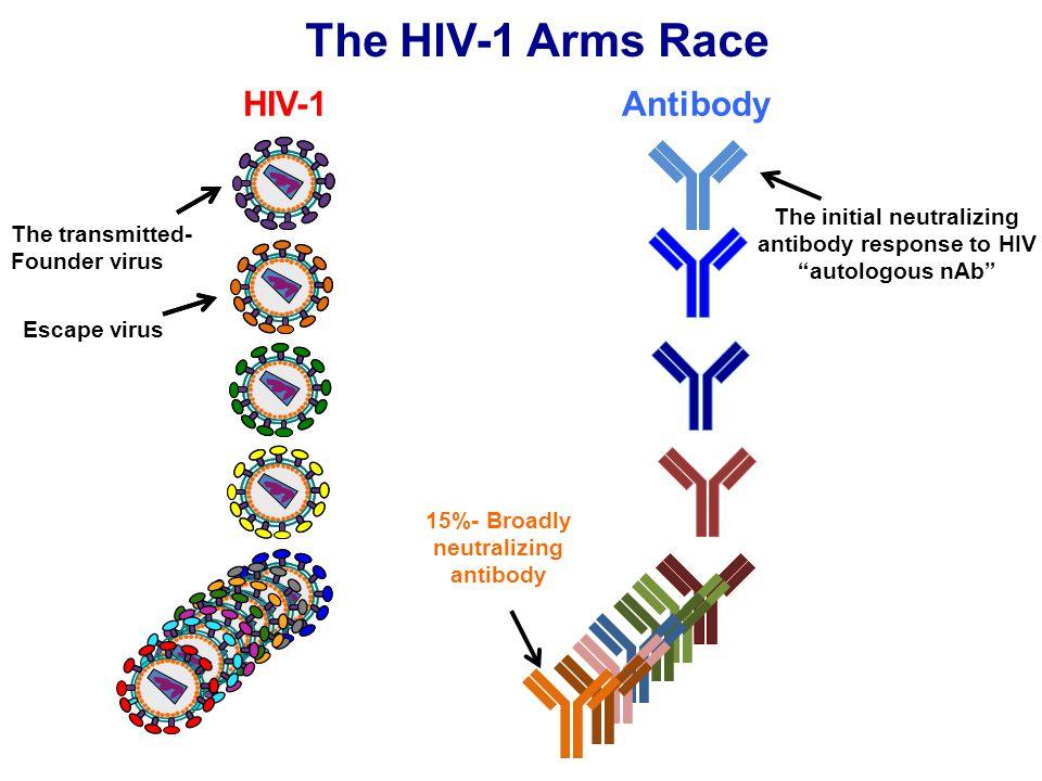 "The HIV-1 Arms Race The initial neutralizing antibody response to HIV ""autologous nAb"" 15%- Broadly neutralizing antibody The transmitted- Founder vir"