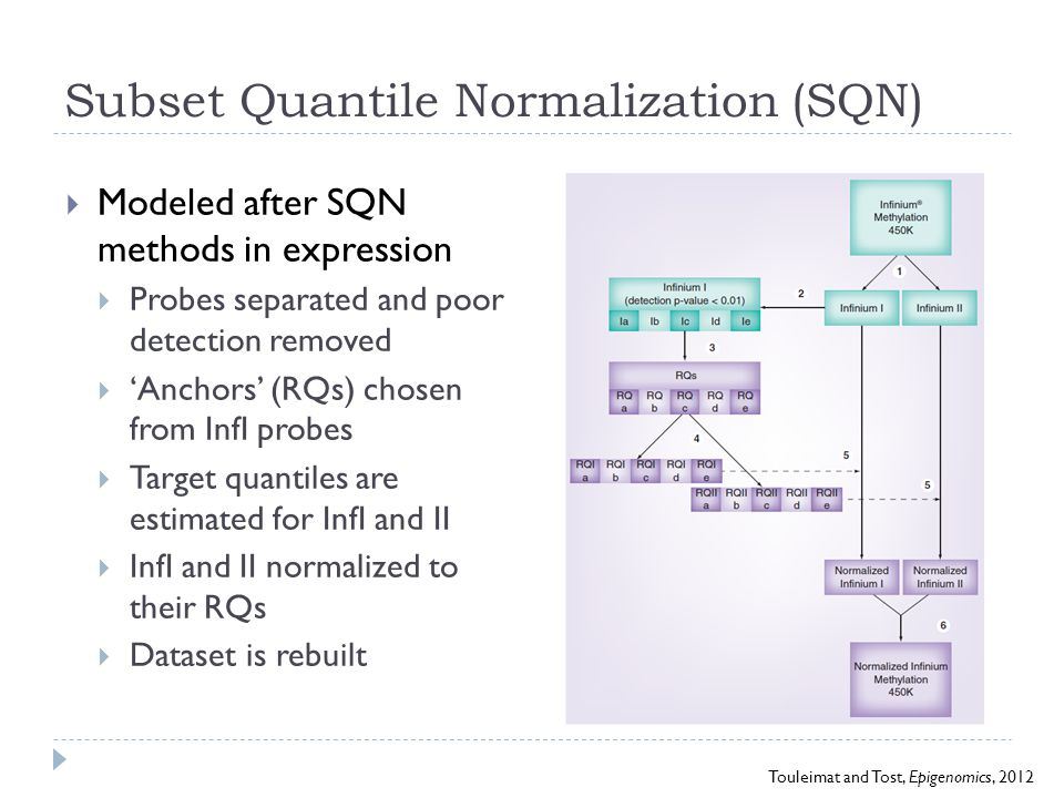 Subset Quantile Normalization (SQN)  Modeled after SQN methods in expression  Probes separated and poor detection removed  'Anchors' (RQs) chosen f