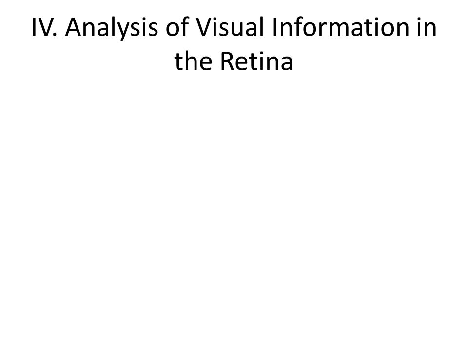 IV. Analysis of Visual Information in the Retina
