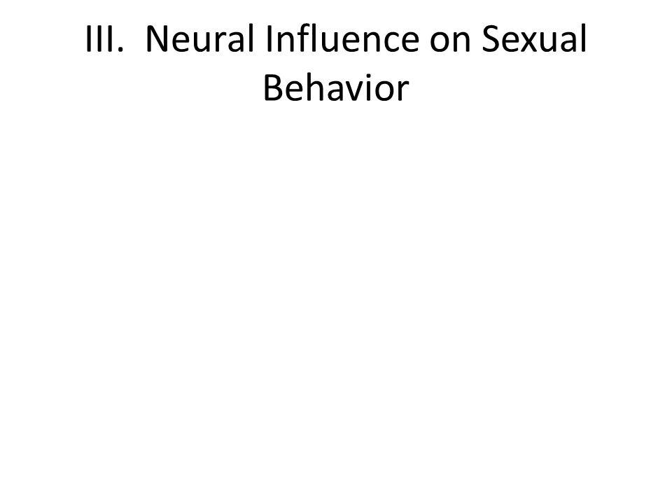 III. Neural Influence on Sexual Behavior