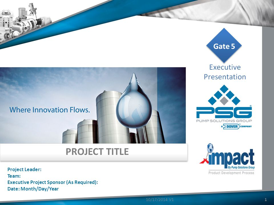 PROJECT TITLE Project Leader: Team: Executive Project Sponsor (As Required): Date: Month/Day/Year 110/17/2014 V1
