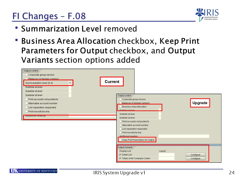 IRIS System Upgrade v124 FI Changes – F.08 Summarization Level removed Business Area Allocation checkbox, Keep Print Parameters for Output checkbox, a