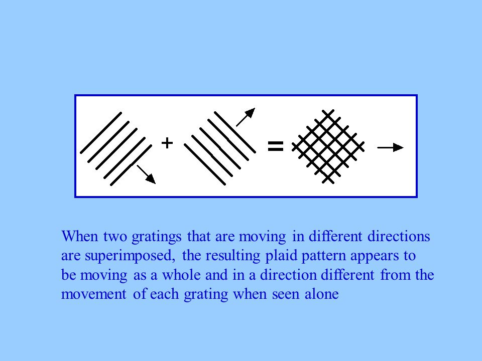 When two gratings that are moving in different directions are superimposed, the resulting plaid pattern appears to be moving as a whole and in a direction different from the movement of each grating when seen alone