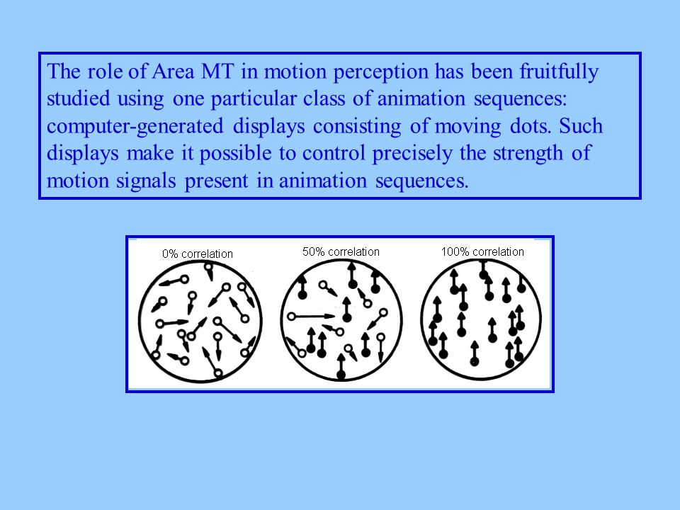 The role of Area MT in motion perception has been fruitfully studied using one particular class of animation sequences: computer-generated displays consisting of moving dots.