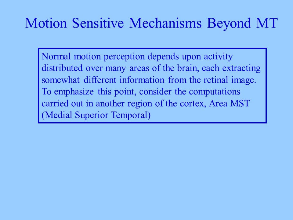 Motion Sensitive Mechanisms Beyond MT Normal motion perception depends upon activity distributed over many areas of the brain, each extracting somewhat different information from the retinal image.