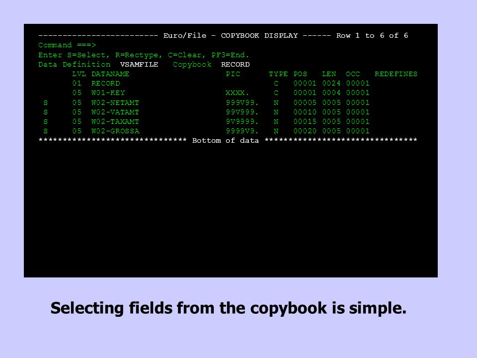 ------------------------- Euro/File - COPYBOOK DISPLAY ------ Row 1 to 6 of 6 Command ===> Enter S=Select, R=Rectype, C=Clear, PF3=End.