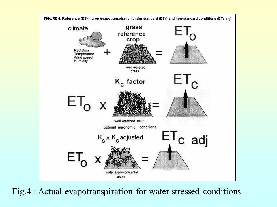 Fig.4 : Actual evapotranspiration for water stressed conditions