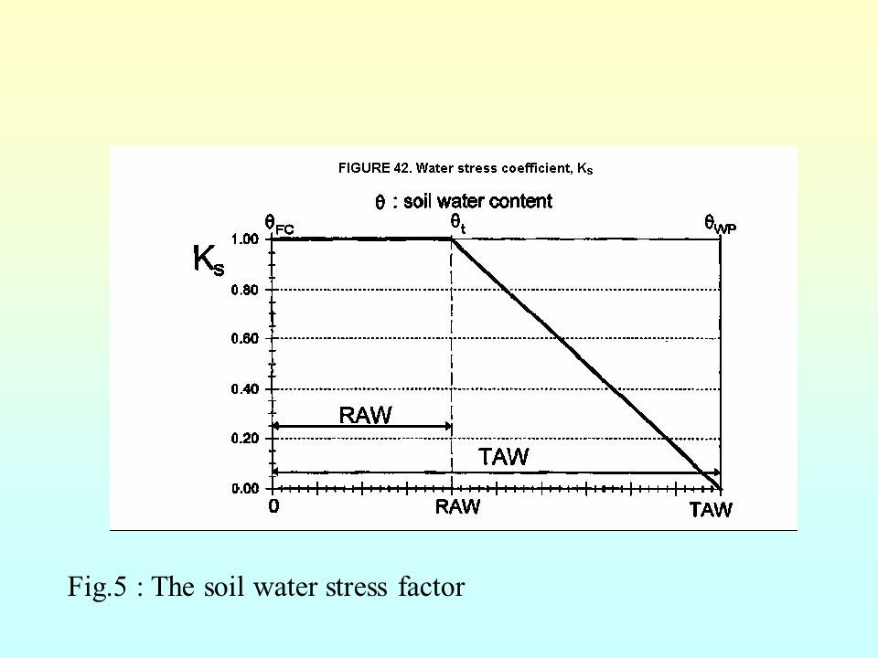 Fig.5 : The soil water stress factor