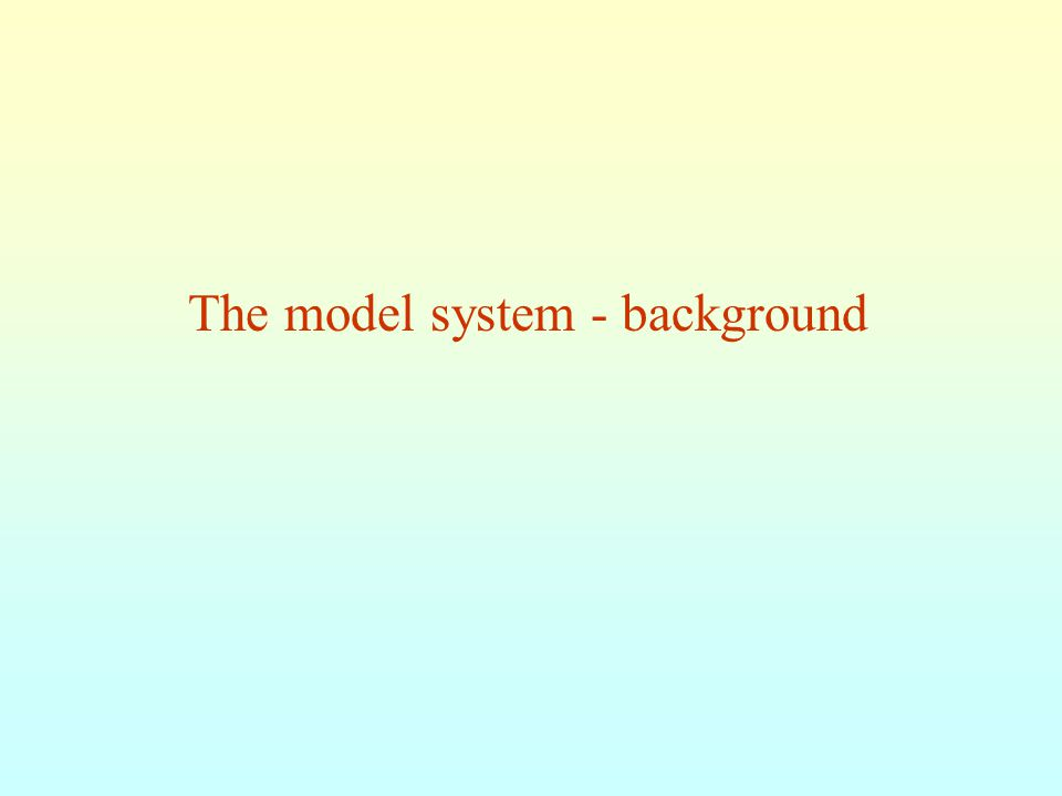 The model system - background