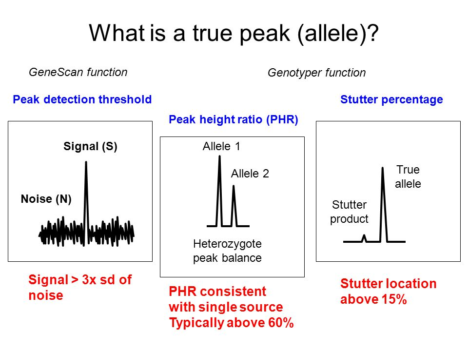 Peak height ratios Moretti et al., JFS 2001, 46(3) 647-660 PP + Cofiler gave PHR >88% n= 230+ samples with a lower range PHR (-3sd) of 59% Suggest using 59% as a guide 2% of single source samples were below this value Many validation studies focus on 1ng input DNA.