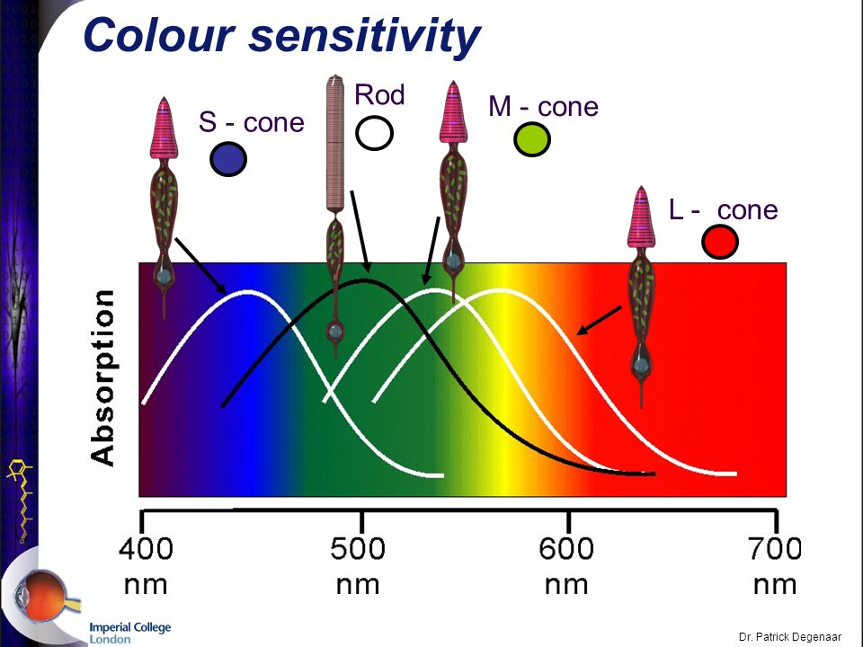 Dr. Patrick Degenaar Why do we need colour