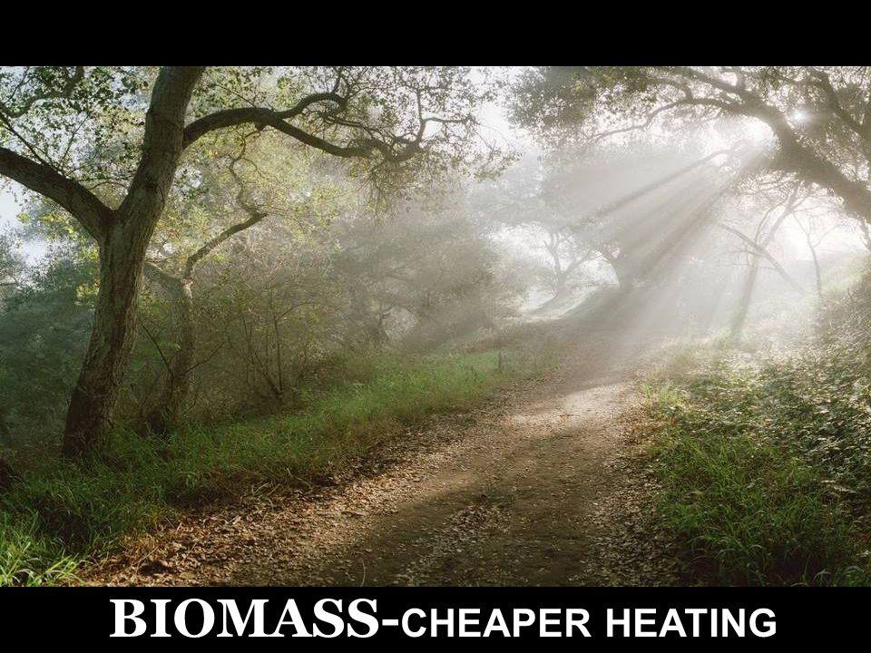 BIOMASS- CHEAPER HEATING