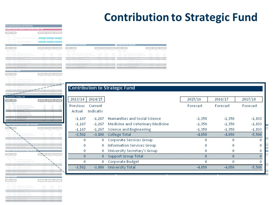 Contribution to Strategic Fund