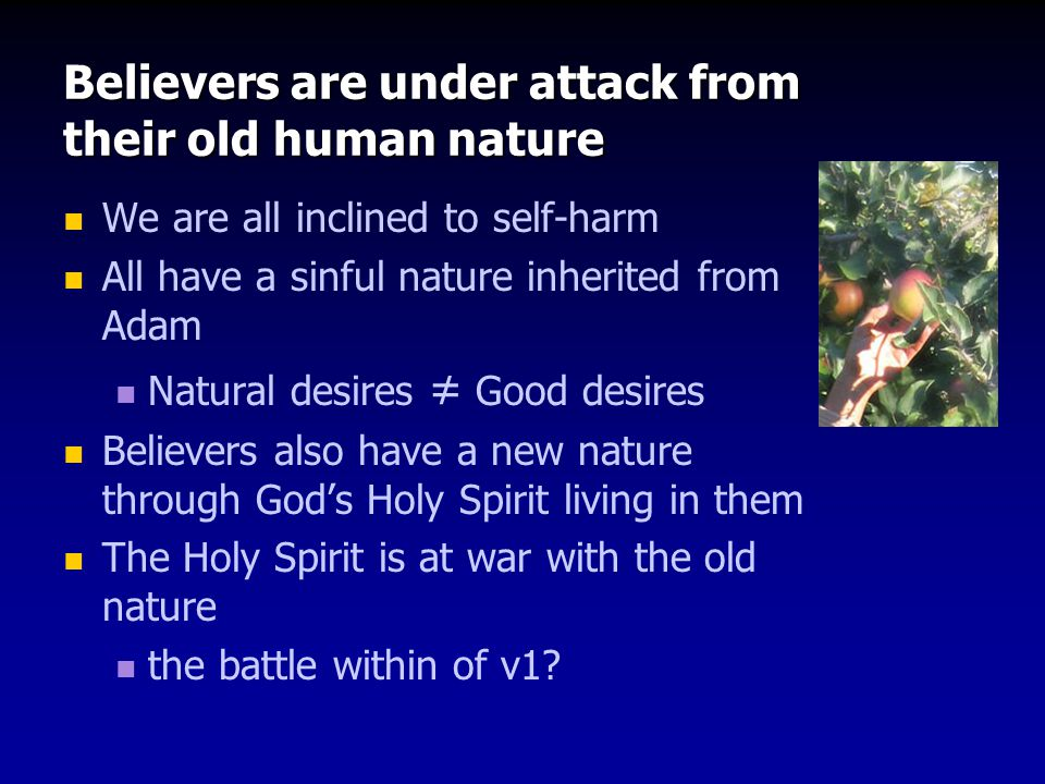 Believers are under attack from their old human nature We are all inclined to self-harm All have a sinful nature inherited from Adam Natural desires ≠ Good desires Believers also have a new nature through God's Holy Spirit living in them The Holy Spirit is at war with the old nature the battle within of v1