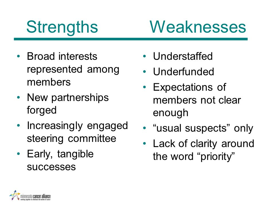 Strengths Weaknesses Broad interests represented among members New partnerships forged Increasingly engaged steering committee Early, tangible success