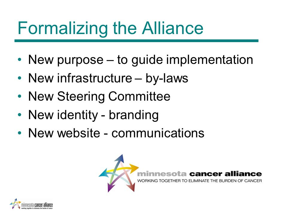 Formalizing the Alliance New purpose – to guide implementation New infrastructure – by-laws New Steering Committee New identity - branding New website - communications