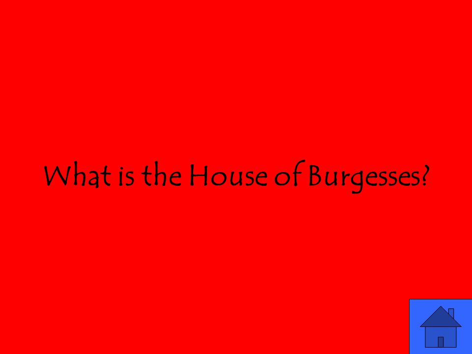 What is the House of Burgesses?