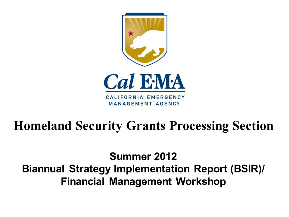 Summer 2012 Biannual Strategy Implementation Report (BSIR)/ Financial Management Workshop Homeland Security Grants Processing Section