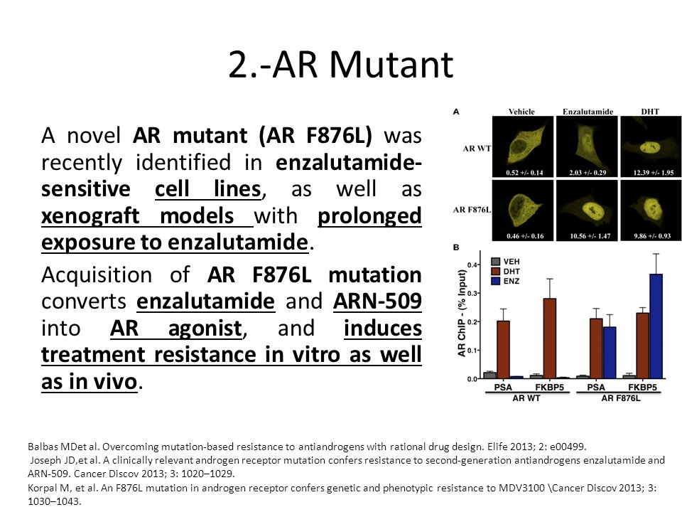 2.-AR Mutant A novel AR mutant (AR F876L) was recently identified in enzalutamide- sensitive cell lines, as well as xenograft models with prolonged ex