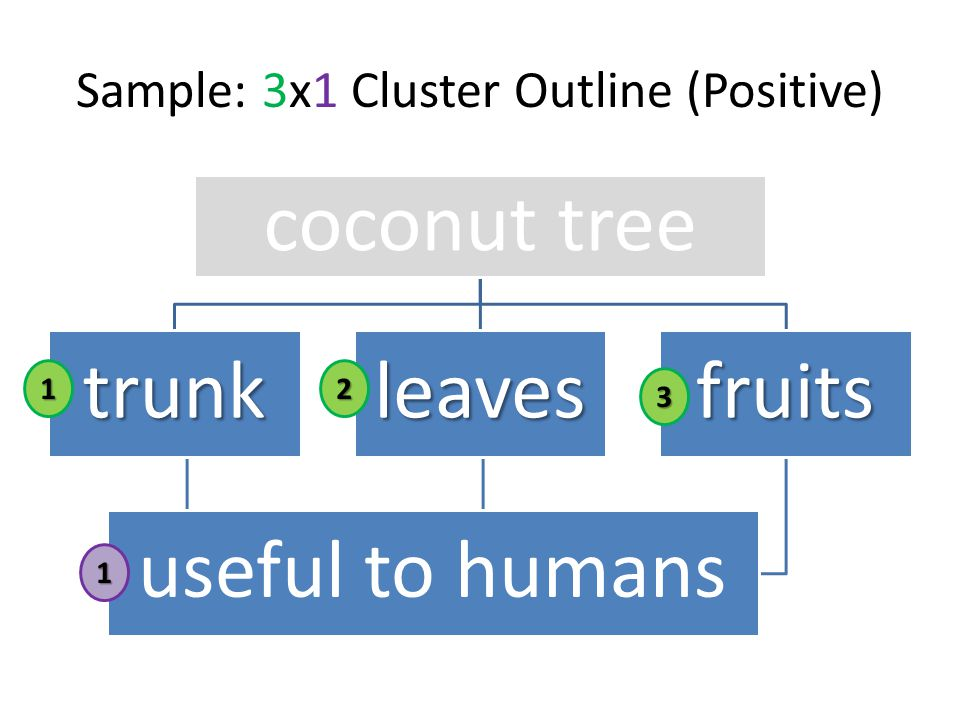 coconut tree trunkleavesfruits useful to humans Sample: 3x1 Cluster Outline (Positive) 12 3 1