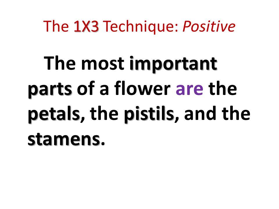 1X3 The 1X3 Technique: Positive important parts petalspistils stamens The most important parts of a flower are the petals, the pistils, and the stamens.
