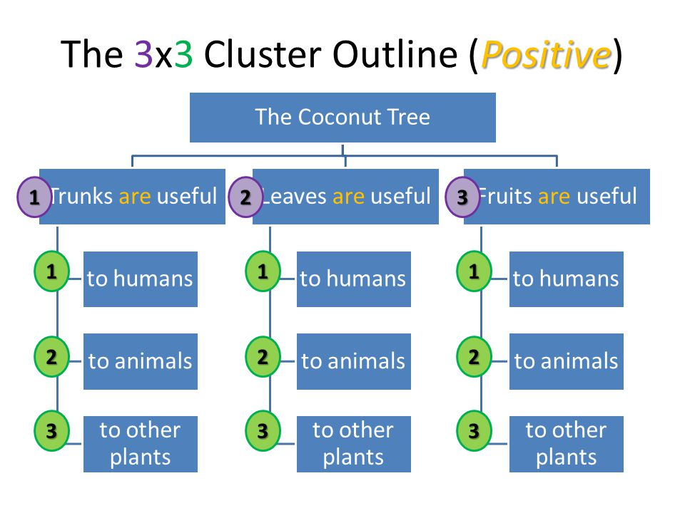 Positive The 3x3 Cluster Outline (Positive) The Coconut Tree Trunks are useful to humans to animals to other plants Leaves are useful to humans to animals to other plants Fruits are useful to humans to animals to other plants123 1 2 3 1 2 3 1 2 3