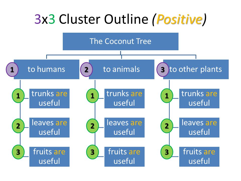 Positive 3x3 Cluster Outline (Positive) The Coconut Tree to humans trunks are useful leaves are useful fruits are useful to animals trunks are useful leaves are useful fruits are useful to other plants trunks are useful leaves are useful fruits are useful1 2 3 123 1 2 3 1 2 3
