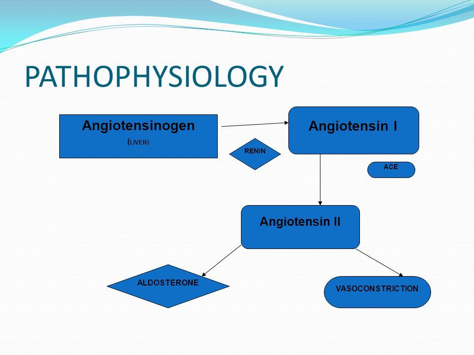 PATHOPHYSIOLOGY Angiotensin II Angiotensin I Angiotensinogen ( LIVER) ALDOSTERONE VASOCONSTRICTION RENIN ACE