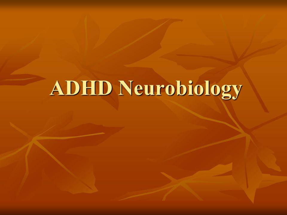 ADHD Neurobiology ADHD Neurobiology