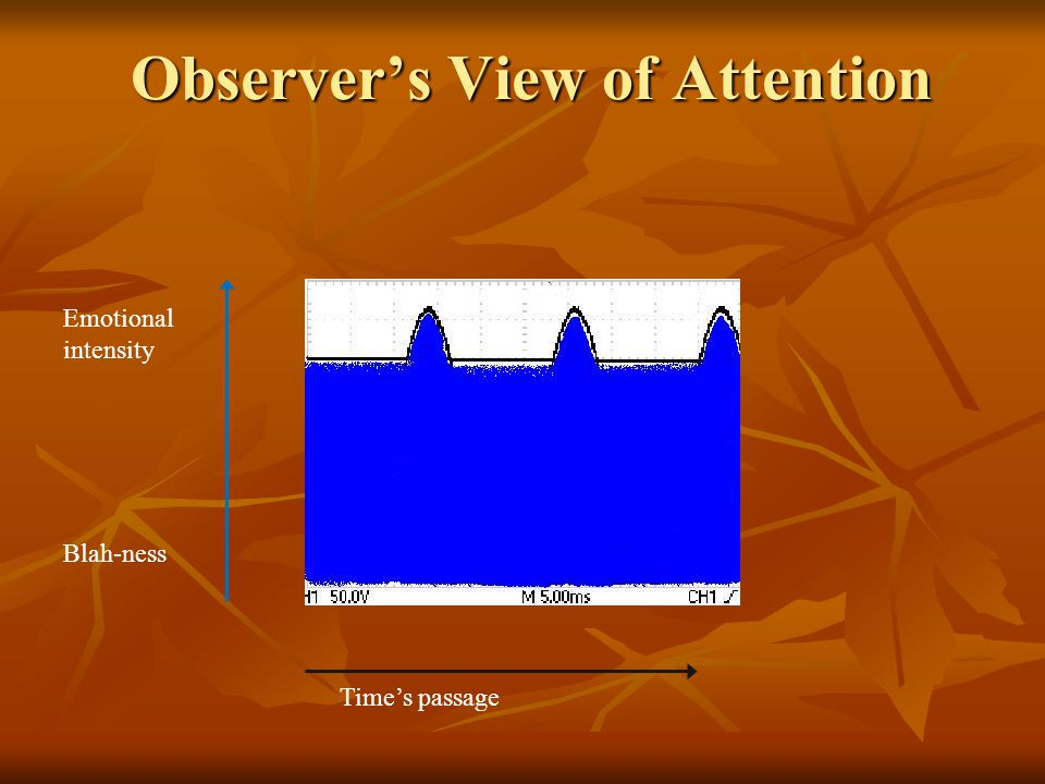 Observer's View of Attention Time's passage Emotional intensity Blah-ness