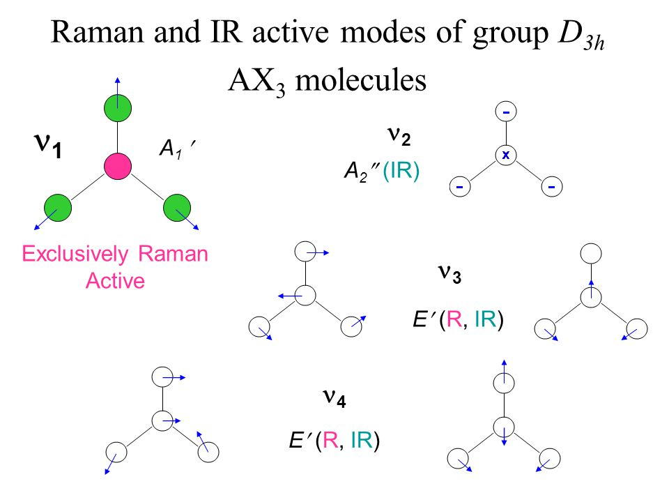 Raman and IR active modes of group D 3h AX 3 molecules 2 4 3 E (R, IR) A 2  (IR) E (R, IR) 1 Exclusively Raman Active A 1
