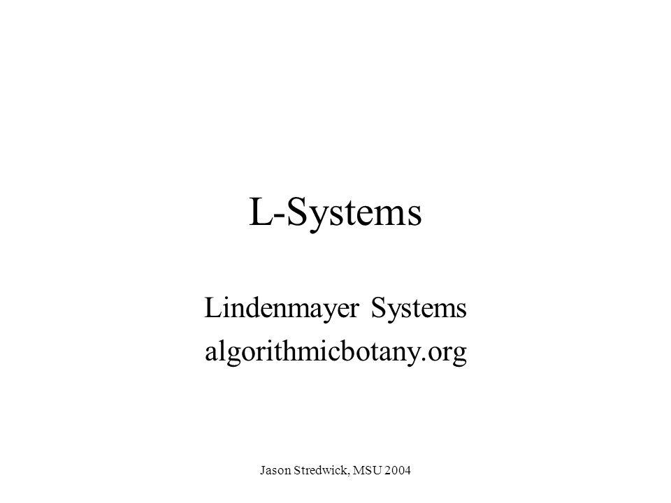 Jason Stredwick, MSU 2004 L-Systems Lindenmayer Systems algorithmicbotany.org