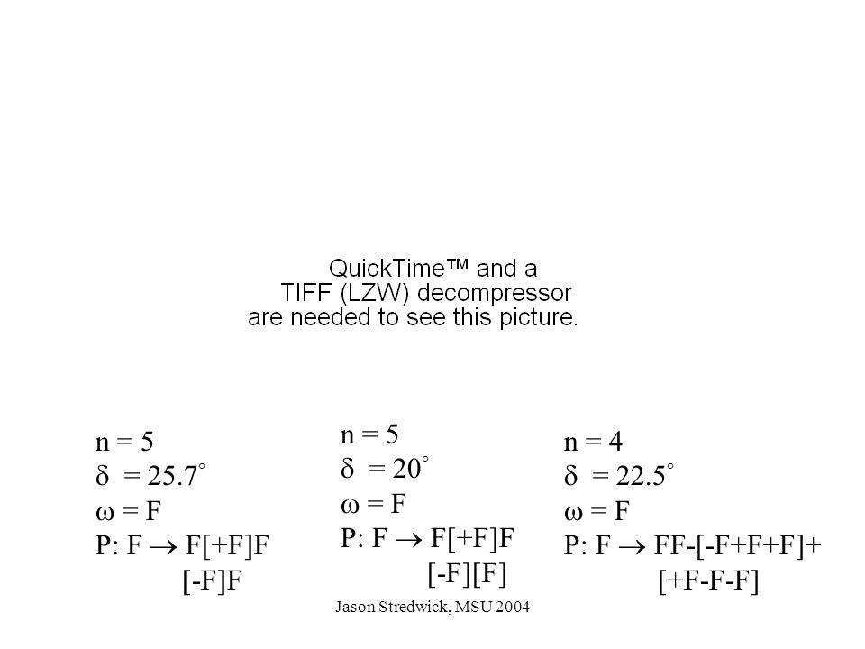 Jason Stredwick, MSU 2004 n = 5  = 25.7   = F P: F  F[+F]F [-F]F n = 5  = 20   = F P: F  F[+F]F [-F][F] n = 4  = 22.5   = F P: F  FF-[-F+F+F]+ [+F-F-F]