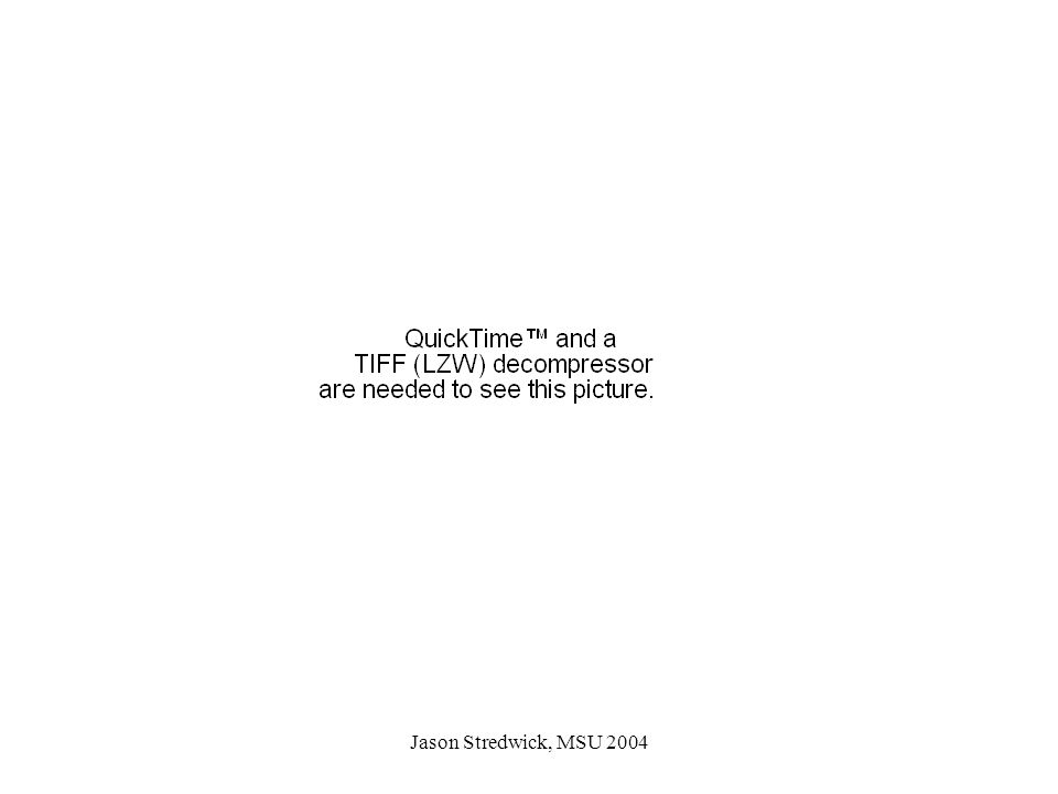 Jason Stredwick, MSU 2004