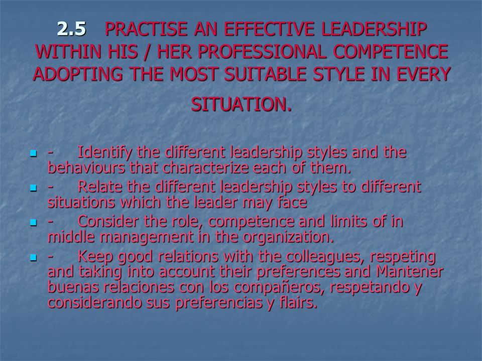 2.5PRACTISE AN EFFECTIVE LEADERSHIP WITHIN HIS / HER PROFESSIONAL COMPETENCE ADOPTING THE MOST SUITABLE STYLE IN EVERY SITUATION.