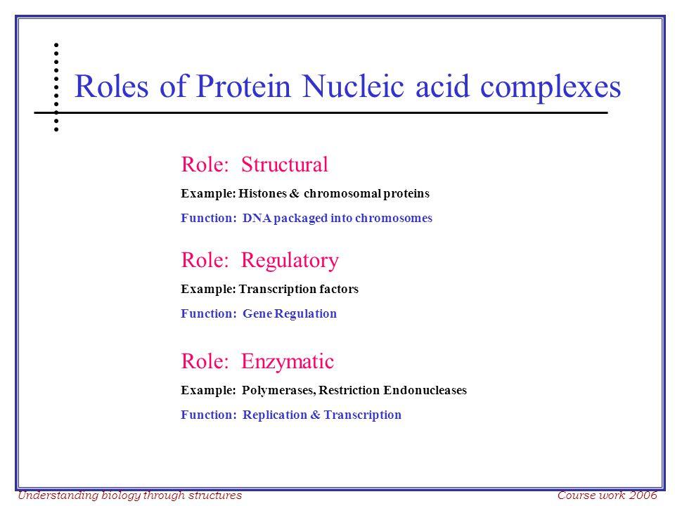 Understanding biology through structures Course work 2006