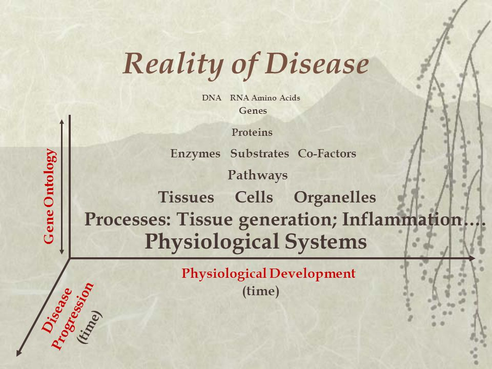 Reality of Disease Tissues Cells Organelles Processes: Tissue generation; Inflammation….
