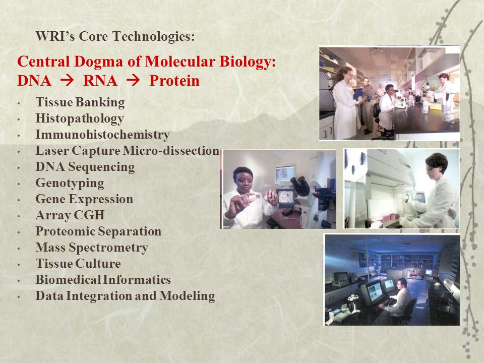 WRI's Core Technologies: Tissue Banking Histopathology Immunohistochemistry Laser Capture Micro-dissection DNA Sequencing Genotyping Gene Expression Array CGH Proteomic Separation Mass Spectrometry Tissue Culture Biomedical Informatics Data Integration and Modeling Central Dogma of Molecular Biology: DNA  RNA  Protein