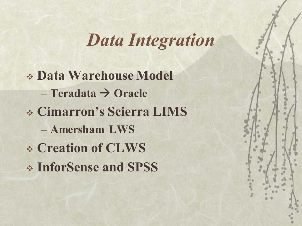 Data Integration  Data Warehouse Model –Teradata  Oracle  Cimarron's Scierra LIMS –Amersham LWS  Creation of CLWS  InforSense and SPSS