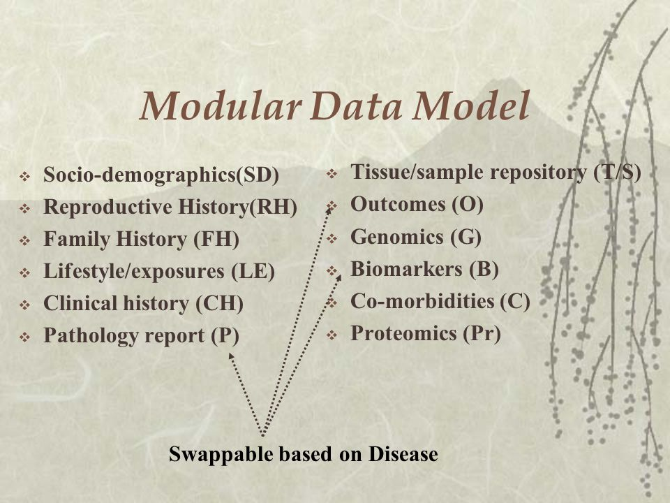 Modular Data Model  Socio-demographics(SD)  Reproductive History(RH)  Family History (FH)  Lifestyle/exposures (LE)  Clinical history (CH)  Pathology report (P)  Tissue/sample repository (T/S)  Outcomes (O)  Genomics (G)  Biomarkers (B)  Co-morbidities (C)  Proteomics (Pr) Swappable based on Disease