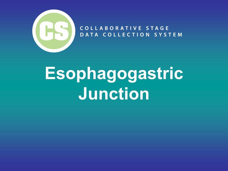 Esophagogastric Junction