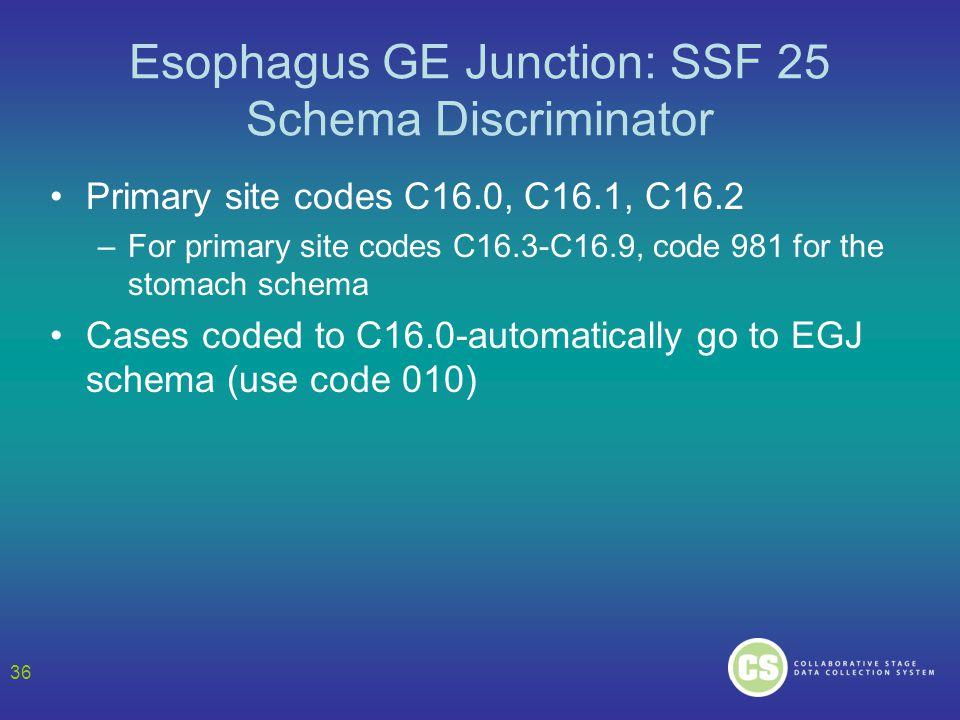 Esophagus GE Junction: SSF 25 Schema Discriminator Primary site codes C16.0, C16.1, C16.2 –For primary site codes C16.3-C16.9, code 981 for the stomac