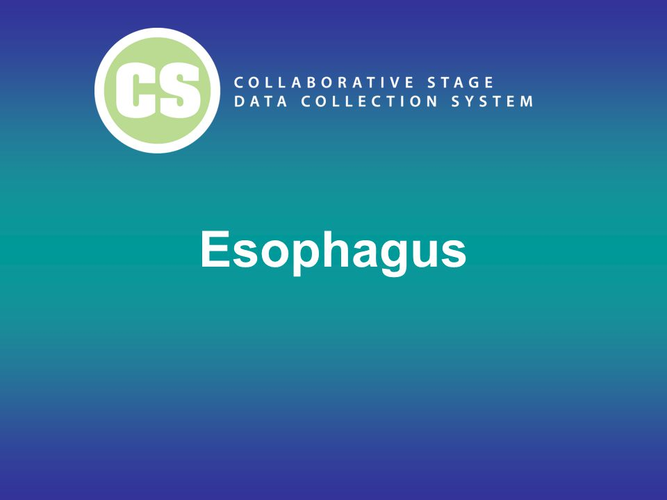 ICD-O-3 Topography Based on Measurement Upper 1/3 esophagus (C15.3) –Proximal third of esophagus Middle 1/3 esophagus (C15.4) –Mid third of esophagus Lower 1/3 esophagus (C15.5) –Distal esophagus Based on Landmarks Cervical esophagus (C15.0) Thoracic esophagus (C15.1) –Upper Thoracic –Mid Thoracic Abdominal esophagus (C15.2) –Lower Thoracic 5