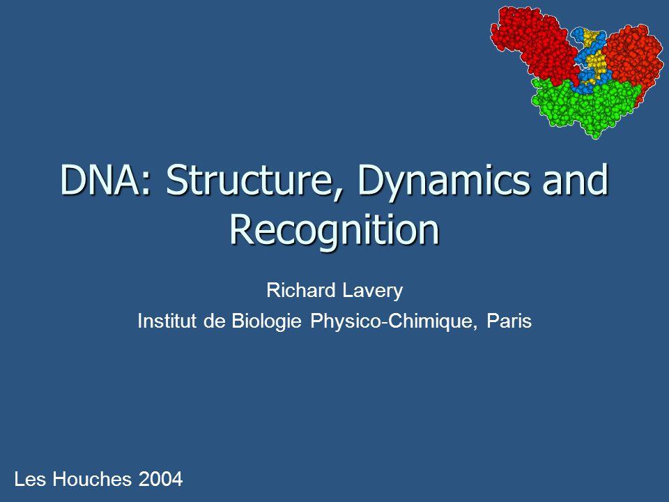 DNA: Structure, Dynamics and Recognition Les Houches 2004 Richard Lavery Institut de Biologie Physico-Chimique, Paris
