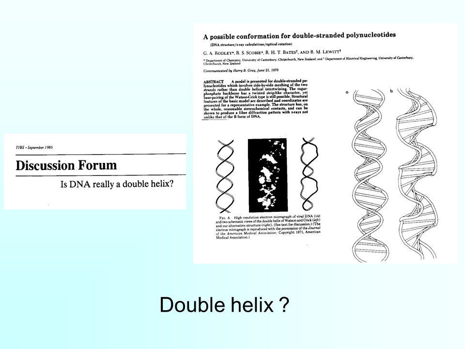 Double helix ?