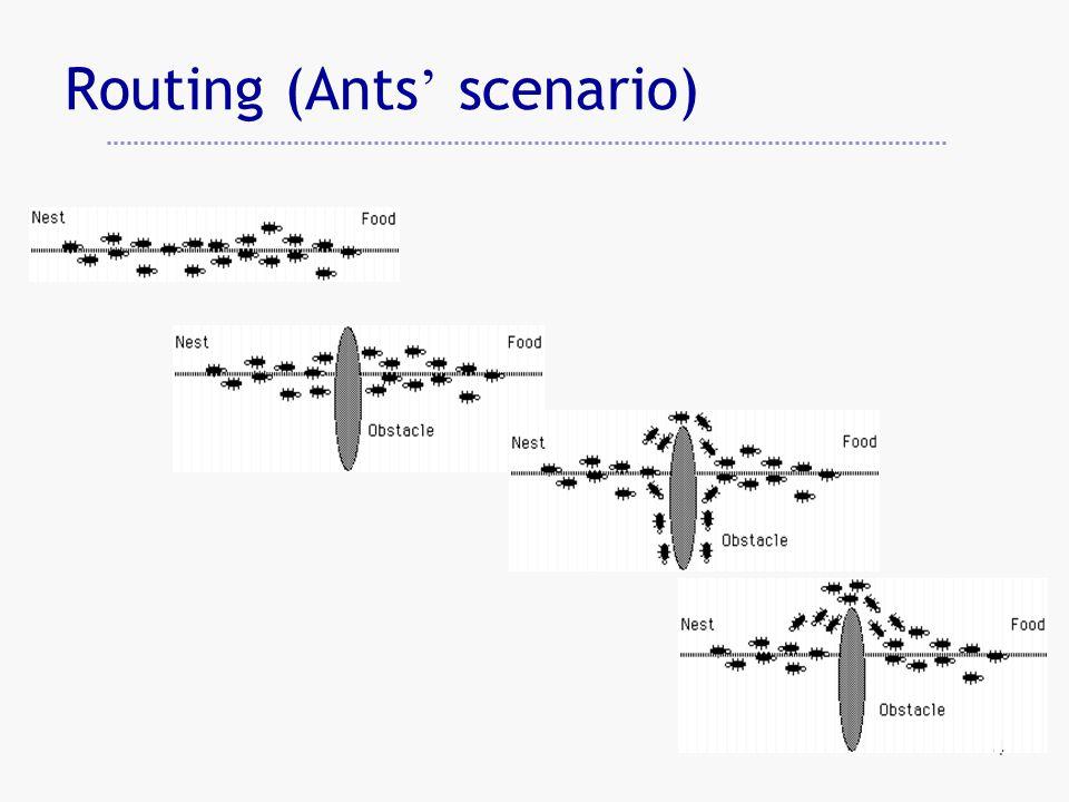 4 Routing (Ants ' scenario)